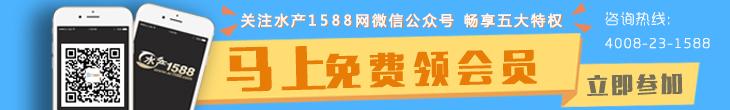 关注水产1588网微信公众号 即享会员5大特权